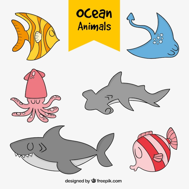 Pack of nice hand drawn ocean animals