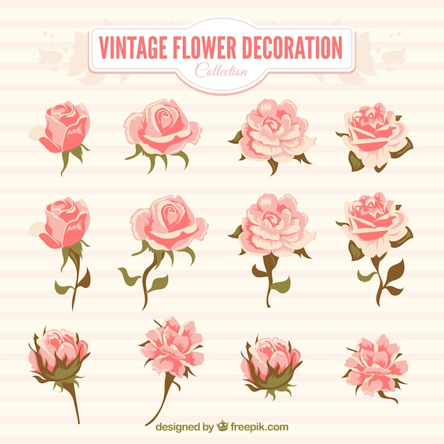 Pack of pink flowers in vintage style