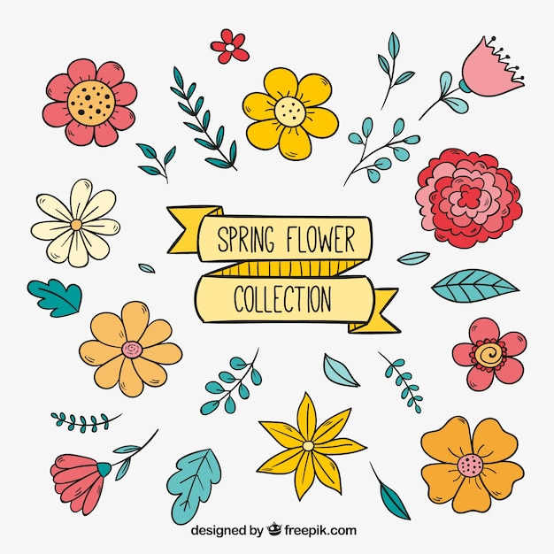 Pack of pretty hand drawn flowers vector free download pack of pretty hand drawn flowers free vector mightylinksfo