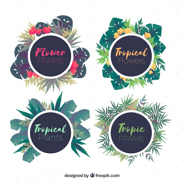 Pack of round frames with tropical watercolor flowers Vector | Free ...