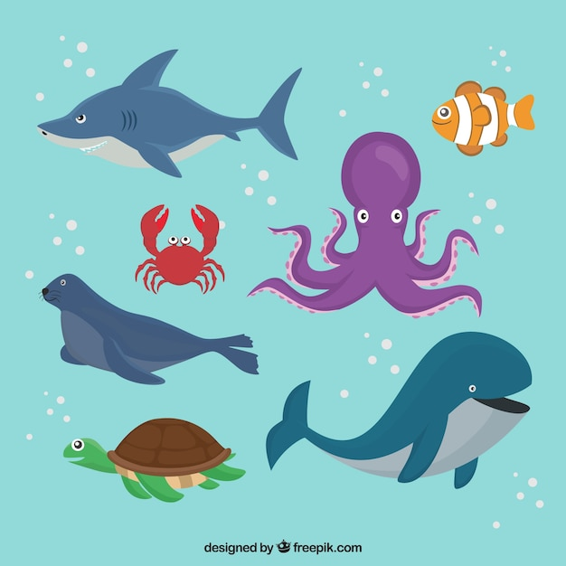 Pack of sea animals swimming Free Vector