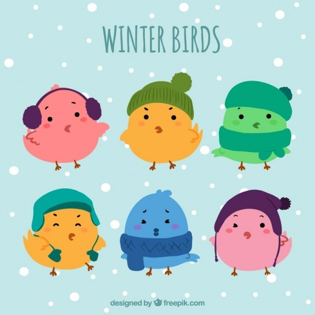 Pack of six cute birds with winter\ accessories