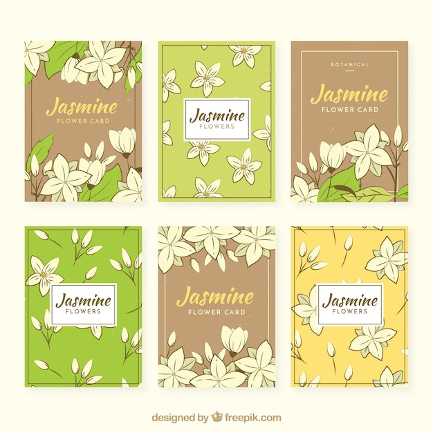 Pack of six retro cards with hand drawn jasmine