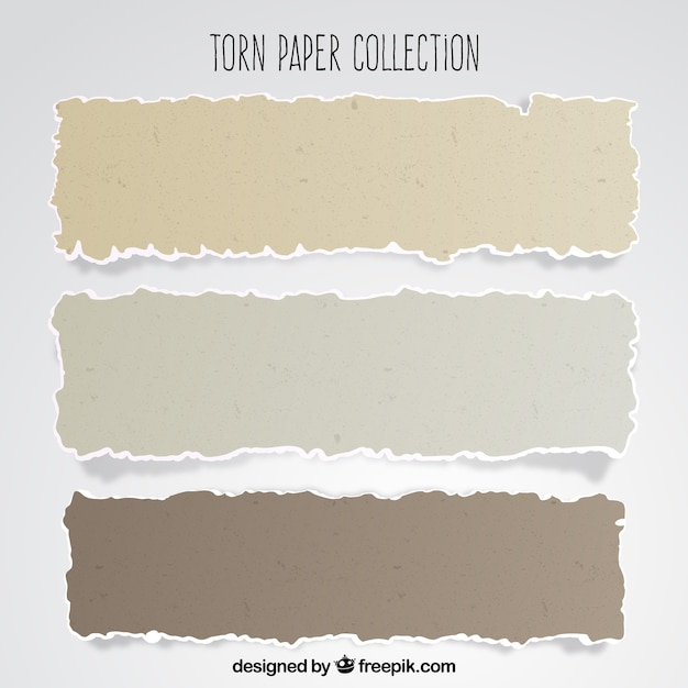 Pack of torn papers Free Vector