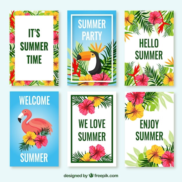Pack of tropical cards with flowers and\ birds