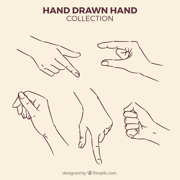 Pack of sketches of hands Free Vector