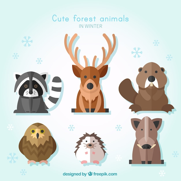 Pack of wild animals in flat design Free Vector