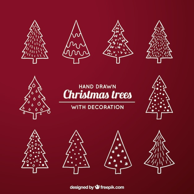 pack with different kind of christmas trees free vector - Different Kinds Of Christmas Trees