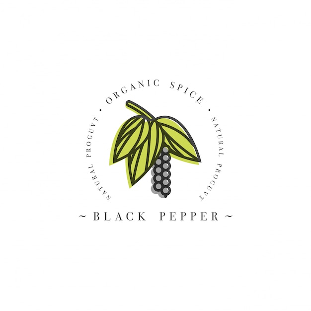 パッケージデザインテンプレートのロゴとエンブレム-ハーブとスパイス-種子と黒胡椒の開花。トレンディな直線的なスタイルのロゴ。 Premiumベクター