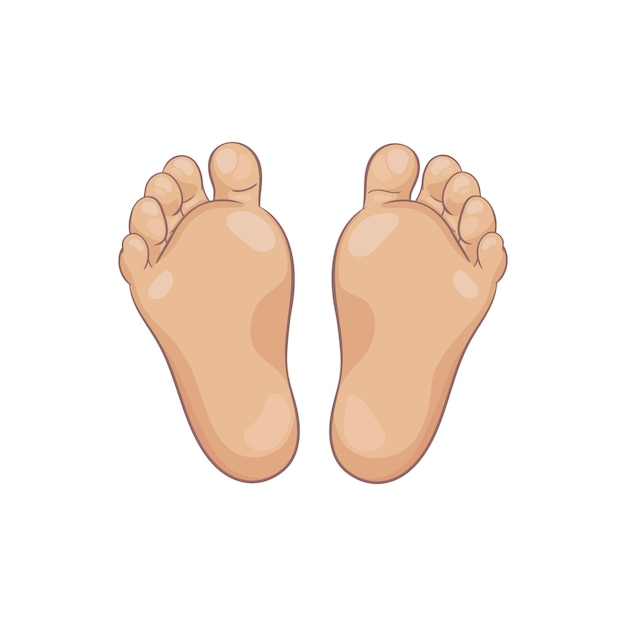 Пара подошвы ног новорожденного ребенка, вид снизу. крошечные пухлые ножки с милым каблуком и пальцами. реалистичные кавказские цвета кожи. иллюстрации, рисованной мультяшном стиле, изолированных на белом. Premium векторы