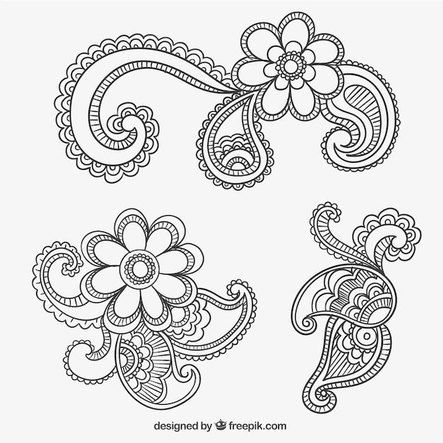 Paisley ornaments Vector | Free Download