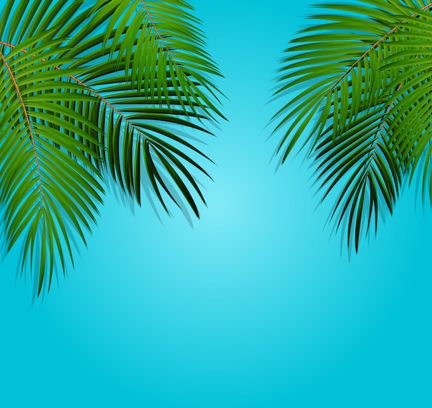 Palm leaf vector background Premium Vector