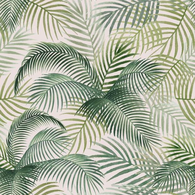 Illustrazione del modello del modello delle foglie di palma Vettore gratuito