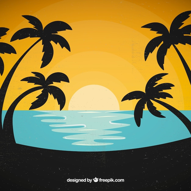 Palm tree and sunset background