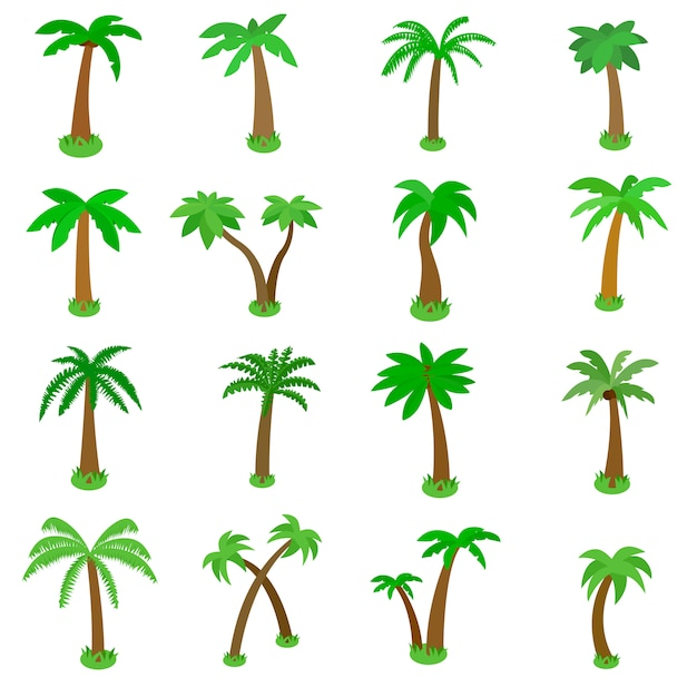 Palm tree icons set in isometric 3d style isolated on white Premium Vector
