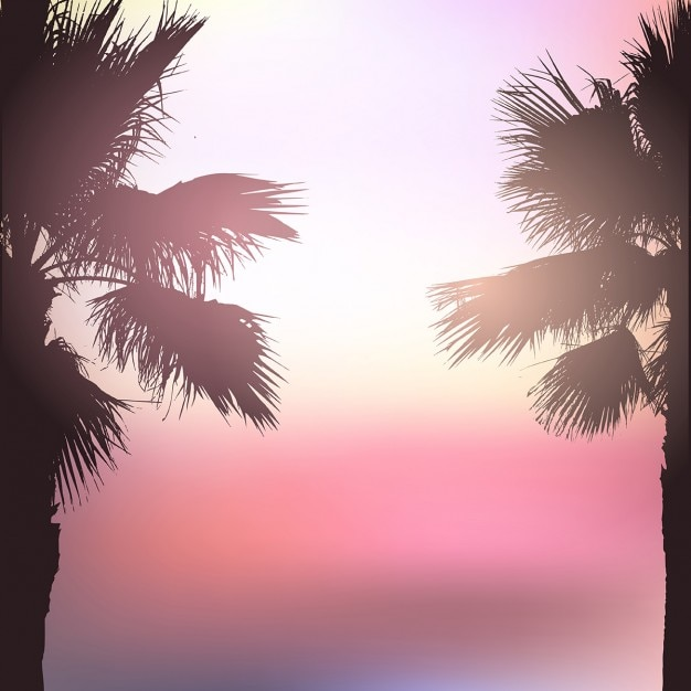 Palm tree landscape background with blurred\ effect