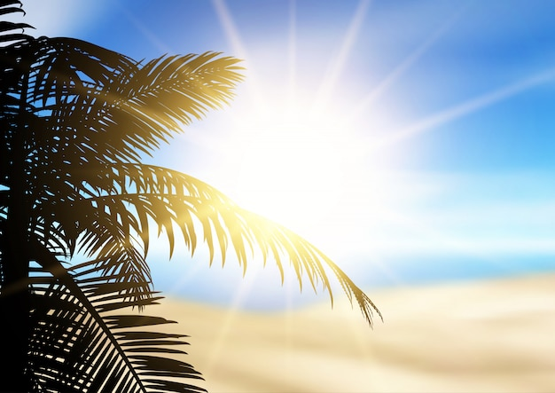 Palm tree silhouette on a defocussed beach landscape Free Vector