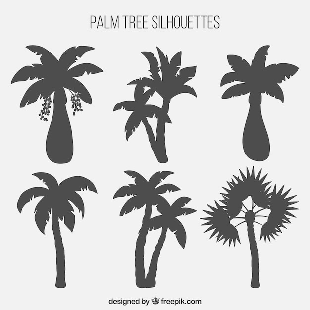 Palm tree silhouettes collection Free Vector