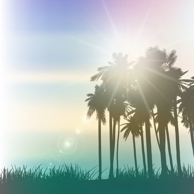 Palm trees landscape with a vintage\ effect