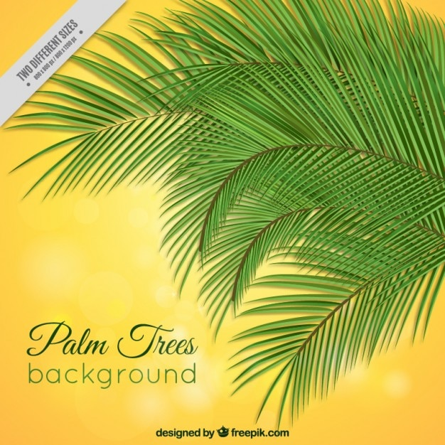 palm trees on a yellow background vector free download