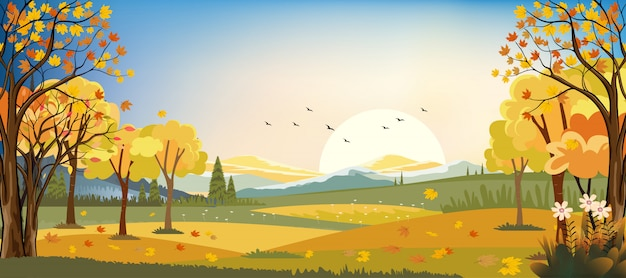 Panorama landscapes of autumn farm field with maple leaves falling from trees, fall season in evening. Premium Vector
