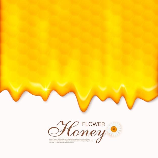 ハニカム付きペーパーカットスタイルの蜂。養蜂と蜂蜜製品のテンプレート。 Premiumベクター