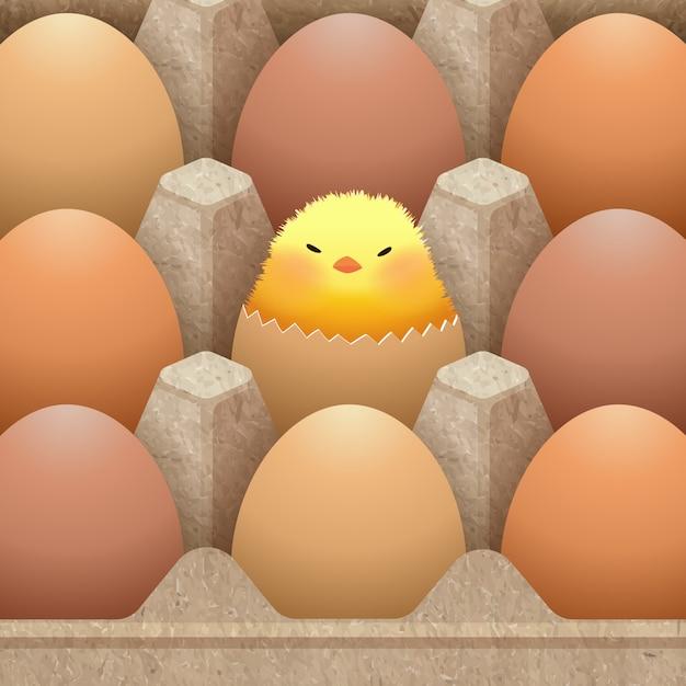 Бумажная упаковка для яиц с изображением яиц Premium векторы