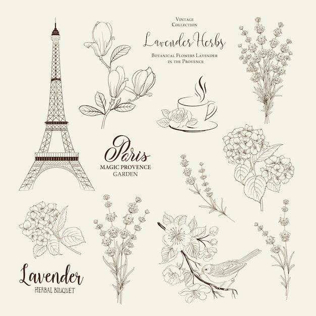 Paris romantic collection. Premium Vector
