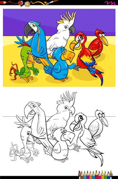 Parrots animal characters group color book Premium Vector