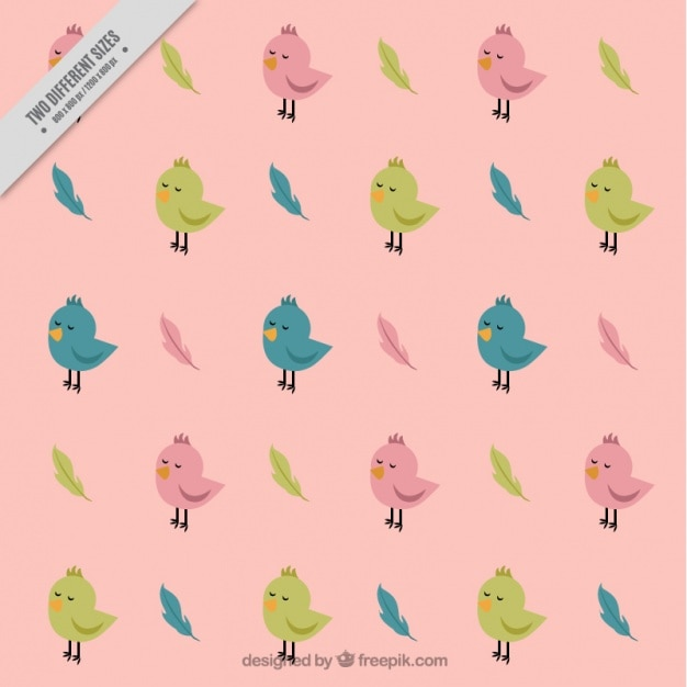 Pattern of small colorful birds