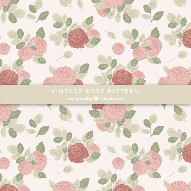 Pattern of vintage hand drawn roses  Free Vector