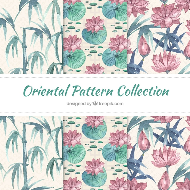Patterns of nature in japanese style Free Vector