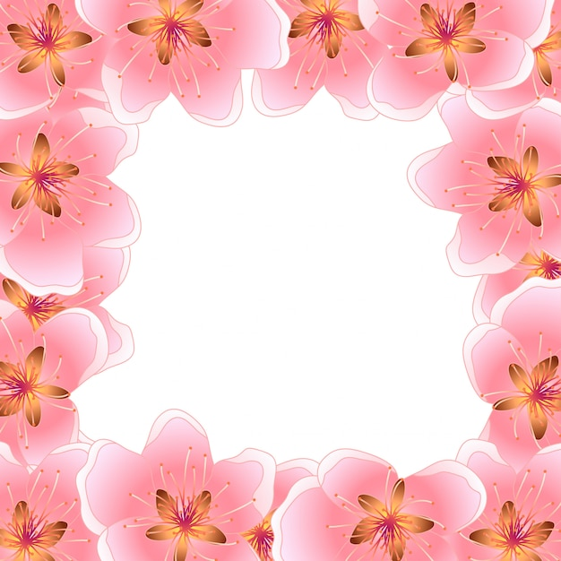 Peach cherry blossom frame background Premium Vector