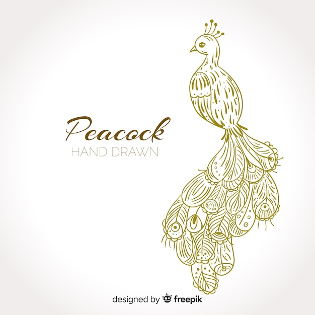 Peacock in hand drawn style Free Vector