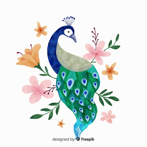 Peacock in watercolor style Free Vector