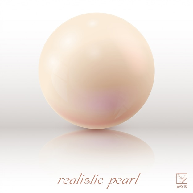 Pearl on a light background with reflection Premium Vector