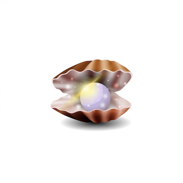 Pearl in shell isolated on white background Premium Vector