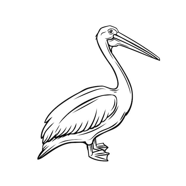 ペリカンのアウトラインアイコン。動物園の鳥のバッジ Premiumベクター
