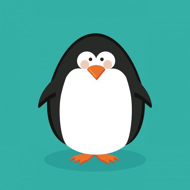 Penguin design Premium Vector