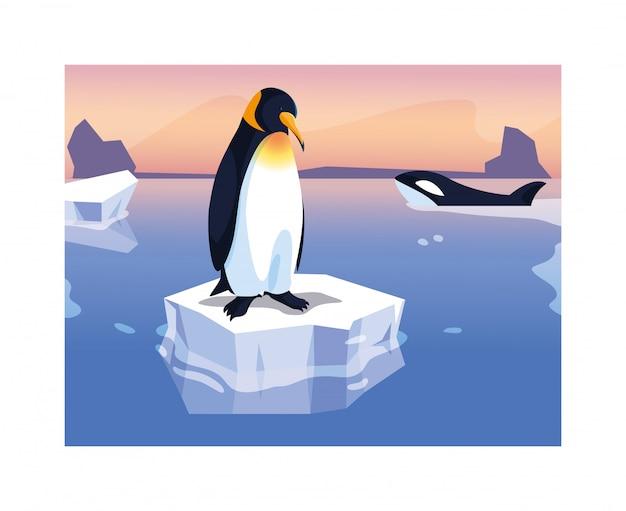Penguin on an ice floe drifting Premium Vector