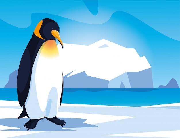 Penguin at the north pole, arctic landscape Premium Vector