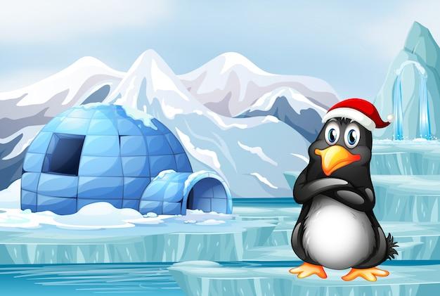 Penguin wearing christmas hat Free Vector