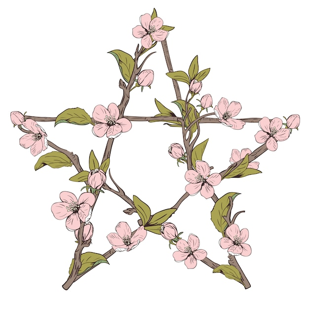 Pentagram sign made with branches from a blooming tree. hand drawn botanical pink blossom on white background. vector illustration. Premium Vector