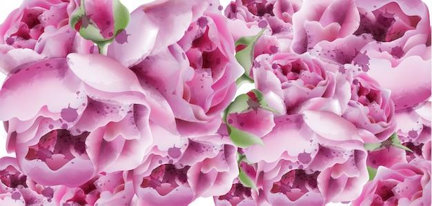 Peonies watercolor exotic floral background Premium Vector