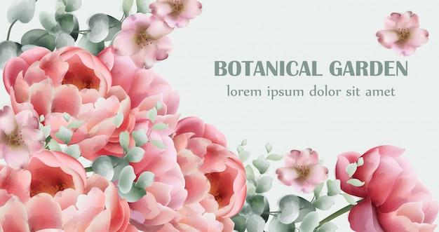 Peony flowers bouquet card watercolor Premium Vector