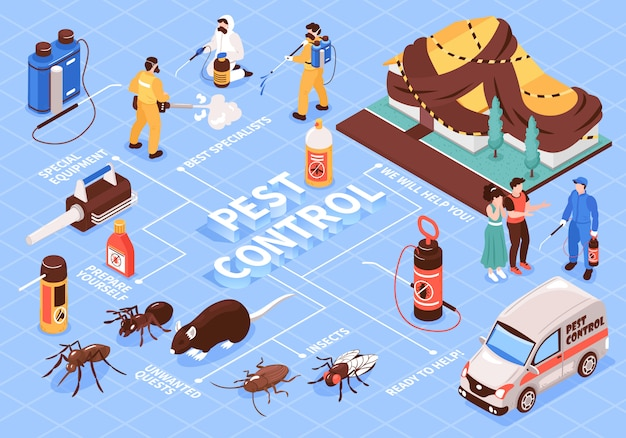 Pest control home office disinfection service isomeric flowchart with professional team equipment car insect rats Free Vector