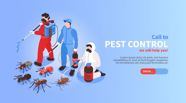 Pest control house hygiene disinfection service isometric website banner with professional team exterminating insects background Free Vector