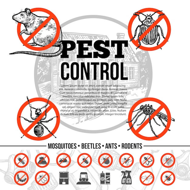 Pest control infographics Free Vector