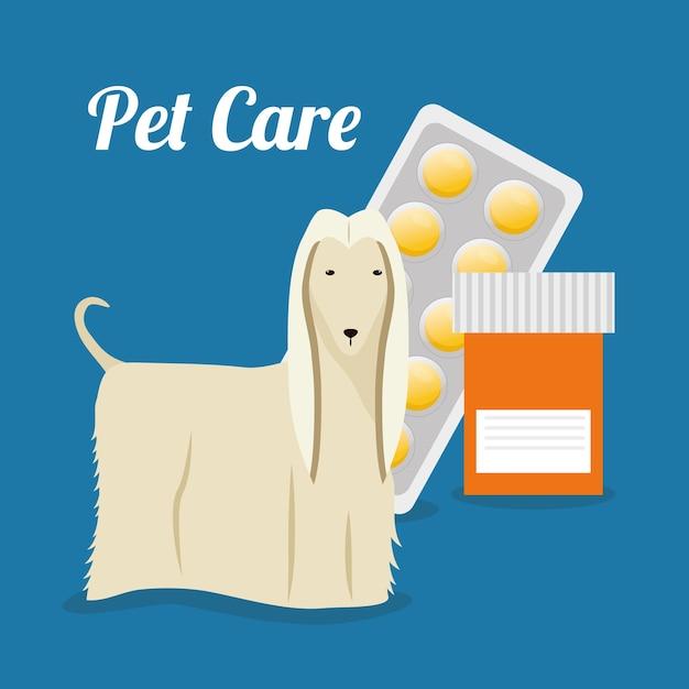 Pet care center service icons Premium Vector