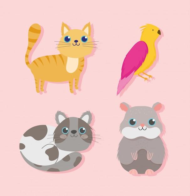 Зоомагазин, милые кошки птицы и хомяки домашних животных мультфильм векторные иллюстрации Premium векторы